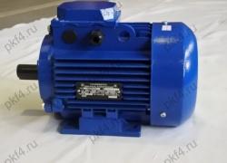 Электродвигатель АДМ 90 L2 (3,0 кВт, 3000 об/мин)