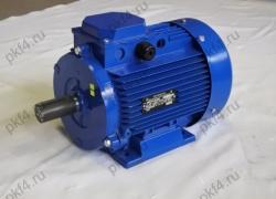 Электродвигатель АДМ 100 L2 (5,50 кВт, 3000 об/мин)