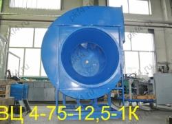 Вентилятор ВЦ 4-75-12,5-1К
